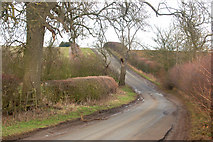 SP5162 : Looking north on the lane from the A425 to Flecknoe by Andy F