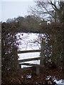 TQ8032 : High Weald Landscape Walk heads towards Benenden by David Anstiss