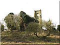 TL9881 : The ruined church of St Nicholas by Evelyn Simak