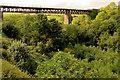 X3396 : Ballyvoyle viaduct, Co Waterford by Albert Bridge