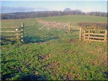 SO7334 : Farmland near Pepper Mill by Trevor Rickard