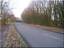 SU6349 : Farleigh Road and path by Sandy B