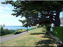 SZ5881 : Keats Green, Shanklin, Isle of Wight by Christine Matthews