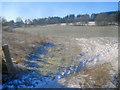 SO2855 : Grassland west of Hergest Road by Trevor Rickard
