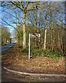 SO7378 : Postensplain sign, Wyre Forest by P L Chadwick