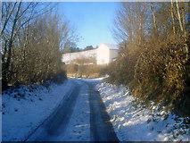 SO2654 : Lane at Upper Hergest by Trevor Rickard