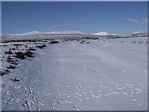 NN7372 : Allt Geallaidh north-west of Carn nan Seabhag by ian shiell