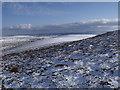 NN7277 : Eastern slopes of Meall na Spianaig near Sronphadruig by ian shiell