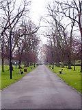 SU4212 : East Park by Rod Allday