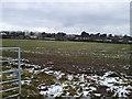 O0657 : Agricultural Landscape Co Dublin by C O'Flanagan