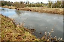J2866 : The River Lagan near Lambeg (4) by Albert Bridge