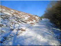 SO2355 : Farm track climbing the Hergest Ridge by Trevor Rickard