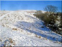 SO2455 : The Hergest Ridge by Trevor Rickard