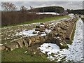 NZ1366 : Mediaeval circular kiln in Hadrian's Wall by Mike Quinn