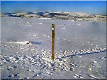 SO2556 : Way marker post on the Hergest Ridge by Trevor Rickard