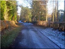 SO2856 : Ridgebourne Road by Trevor Rickard