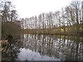 SU5636 : The Grange lake by Sandy B