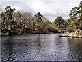 NY3702 : Gale Naze Crag and Brathay Hall Landing Stages by David Dixon