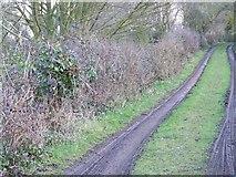 ST5431 : Footpath near Keinton Mandeville by Maigheach-gheal