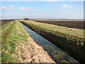 TF5803 : A ditch in Downham Fen by Evelyn Simak