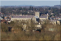SU4829 : Winchester Cathedral From St.Catherine's Hill by Peter Trimming
