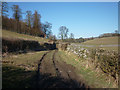 SD5375 : The footpath from Burton-in-Kendal to Coat Green by Karl and Ali