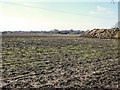 SJ7964 : Looking across the field to Bagmere Farm by Jonathan Kington