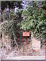 TM3569 : Old gate to Peasenhall Primary School by Adrian Cable