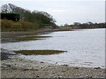 SU8302 : Shoreline near Dell Quay by Maigheach-gheal