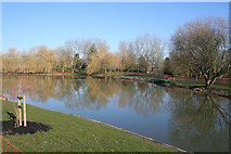 SU9850 : Lake on Stag Hill, University of Surrey by Kate Jewell