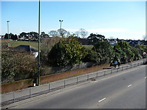 SZ0894 : Bournemouth : Boundary Road & Victoria Park by Lewis Clarke