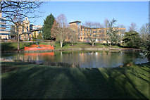 SU9850 : Terry's Pond, University of Surrey by Kate Jewell