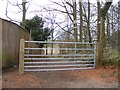 SO7599 : Badger Lane Footpath by Gordon Griffiths