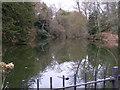 SO7699 : Upper Pool Badger by Gordon Griffiths