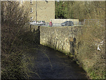 SK0394 : Glossop Brook by michael ely
