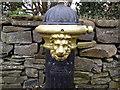 N9752 : Pump, Co Meath (detail) by C O'Flanagan