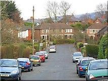 J3370 : Hillside Drive, Belfast by Dean Molyneaux