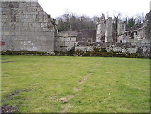 SJ5415 : Rabbits' footpath at Haughmond Abbey by Marion Phillips