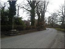 N9155 : Wayside Cross, Dunsany, Co Meath by C O'Flanagan
