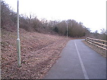 SU6252 : Cycleway to Buckskin by Given Up