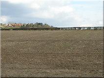 SK5855 : Farmland near Blidworth by JThomas