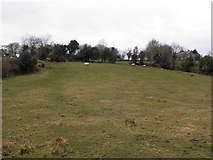 C1708 : Curagh Townland by Kenneth  Allen