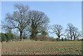 SO7891 : Arable land near Lower Beobridge, Staffordshire by Roger  Kidd