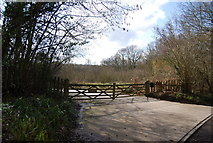 TQ7034 : Entrance to Combwell Wood, Roger's Rough Rd by N Chadwick