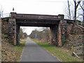 NX9677 : Railway bridge without a railway by Richard Dorrell