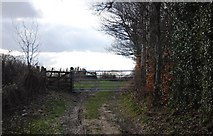 TQ7035 : Gate on the footpath heading west from Riseden Lane by N Chadwick