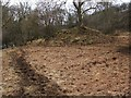 NS7784 : Mound beside the River Carron by Lairich Rig