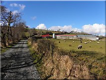 C1303 : Lane, Stroangibbagh by Kenneth  Allen