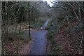 SN6671 : The Ystwyth Trail near Pen-rhiw by Nigel Brown