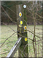 TG2405 : Footpath marker on Boudica's Way by Evelyn Simak